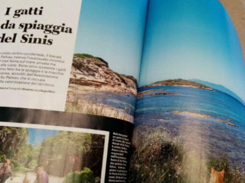 oasi felina su pallosu nella rivista bell'italia 1