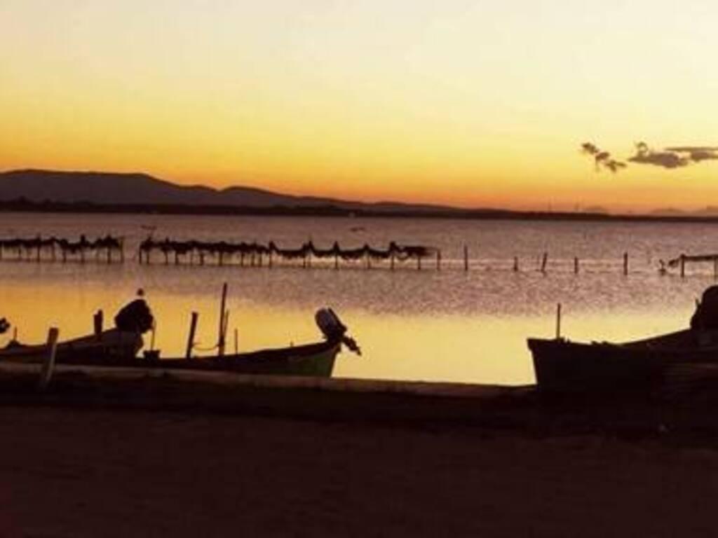 Santa Giusta - stagno tramonto