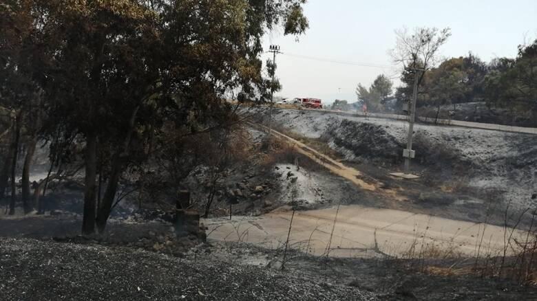 Bonarcado - incendio 24 luglio 2021