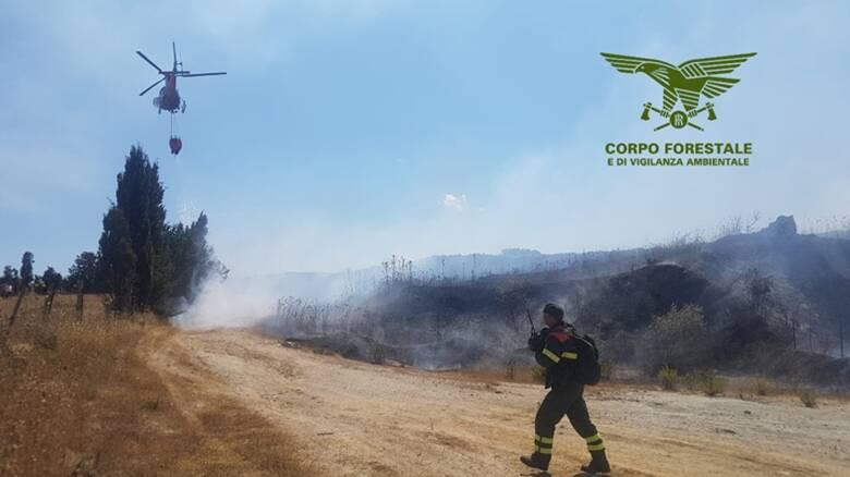 Incendio - Foto Corpo forestale