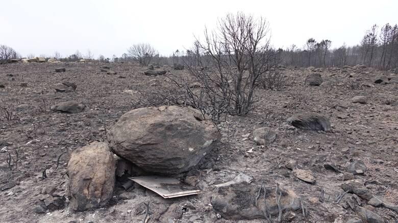 Montiferru - la devastazione dopo il fuoco