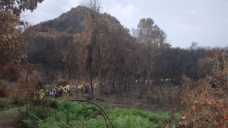 Finanziari a Cuglieri per San Matteo - paesaggio devastato dall'incendio