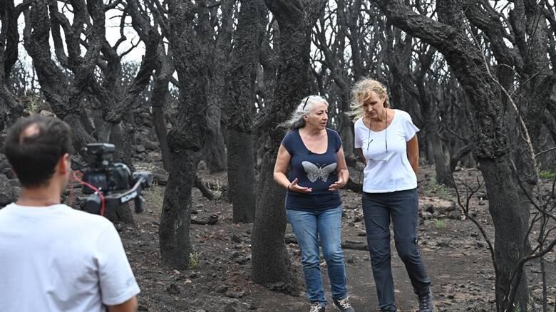 Montiferru - Licia Colò - registrazioni Eden