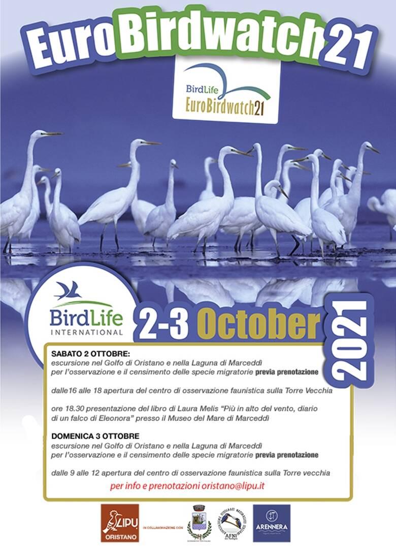 Terralba - birdwatch 2021