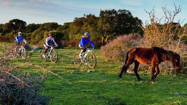 MArmilla - Myland - bici - cavallino giara