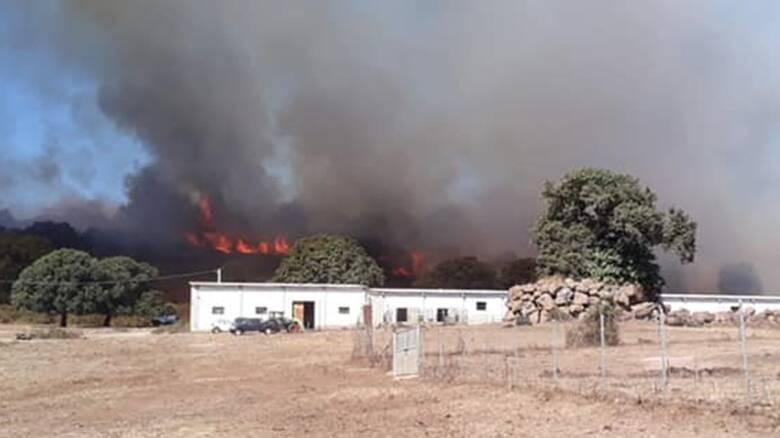 Santu Lussurgiu - incendio - 14 ottobre - Foto Diego Loi